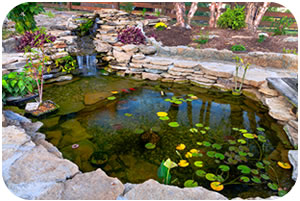 Landscaping services in newtown ma